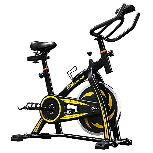 LIFE CARVER BTM Indoor Cycling Exercise Bike